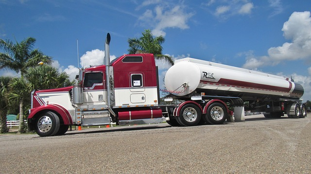 Trucks Trucks & More Trucks!